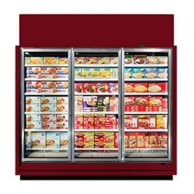 Frozen food freezer